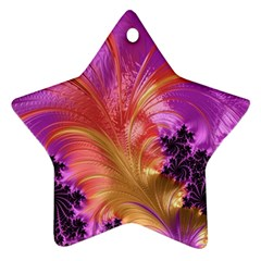 Fractal Puffy Feather Art Artwork Star Ornament (two Sides)