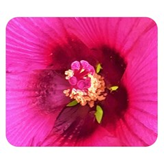 Deep Pink And Crimson Hibiscus Flower Macro Double Sided Flano Blanket (small)