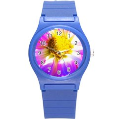 Purple, Pink And White Dahlia With A Bright Yellow Center Round Plastic Sport Watch (s) by myrubiogarden