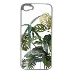 Botanical Illustration Palm Leaf Apple Iphone 5 Case (silver) by Mariart