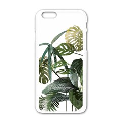 Botanical Illustration Palm Leaf Apple Iphone 6/6s White Enamel Case
