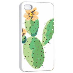 Cactaceae Thorns Spines Prickles Apple Iphone 4/4s Seamless Case (white)
