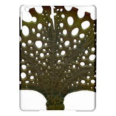 Leaf Tree Ipad Air Hardshell Cases