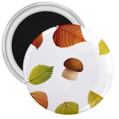 Leaves Mushrooms 3  Magnets by Mariart