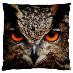 Owl s Scowl Standard Flano Cushion Case (two Sides) by WensdaiAddamns