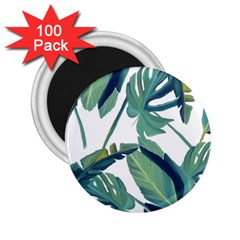 Plants Leaves Tropical Nature 2 25  Magnets (100 Pack)