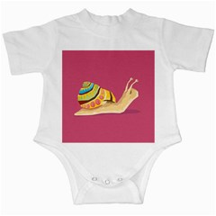 Snail Color Nature Animal Infant Creepers