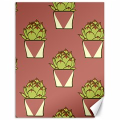 Cactus Pattern Background Texture Canvas 18  X 24
