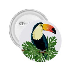 Tropical Birds 2 25  Buttons