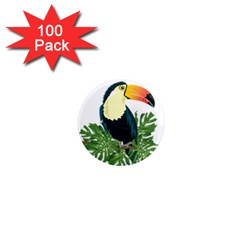 Tropical Birds 1  Mini Magnets (100 Pack)