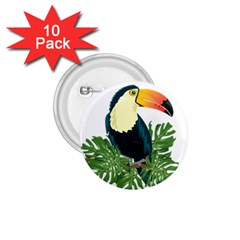 Tropical Birds 1 75  Buttons (10 Pack)