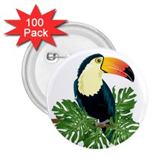 Tropical Birds 2 25  Buttons (100 Pack)