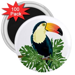Tropical Birds 3  Magnets (100 Pack)