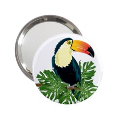 Tropical Birds 2 25  Handbag Mirrors