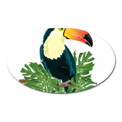 Tropical Birds Oval Magnet