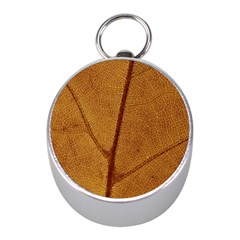 Leaf Fall Foliage Nature Orange Mini Silver Compasses