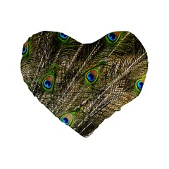 Green Peacock Feathers Color Plumage Standard 16  Premium Heart Shape Cushions by Pakrebo