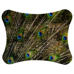 Green Peacock Feathers Color Plumage Jigsaw Puzzle Photo Stand (bow)