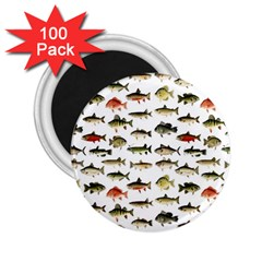 Ml 71 Fish Of North America 2 25  Magnets (100 Pack)