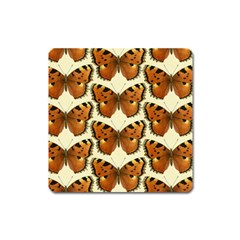 Butterflies Insects Square Magnet by Mariart
