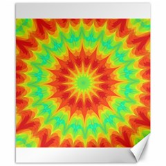Kaleidoscope Background Mandala Red Green Canvas 8  X 10  by Mariart