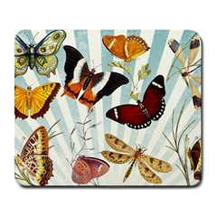My Butterfly Collection Large Mousepads by WensdaiAmbrose
