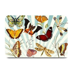 My Butterfly Collection Plate Mats by WensdaiAmbrose