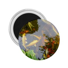 Koi Fish Pond 2 25  Magnets