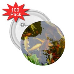 Koi Fish Pond 2 25  Buttons (100 Pack)