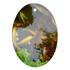 Koi Fish Pond Oval Ornament (two Sides)