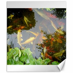Koi Fish Pond Canvas 8  X 10