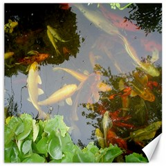 Koi Fish Pond Canvas 20  X 20
