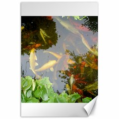 Koi Fish Pond Canvas 24  X 36