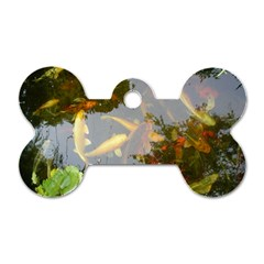 Koi Fish Pond Dog Tag Bone (one Side)