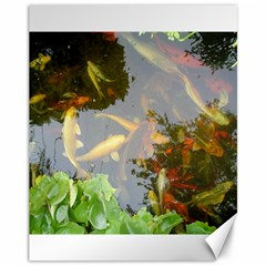 Koi Fish Pond Canvas 11  X 14