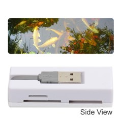 Koi Fish Pond Memory Card Reader (stick)