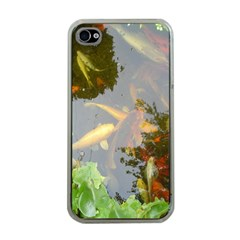 Koi Fish Pond Apple Iphone 4 Case (clear)