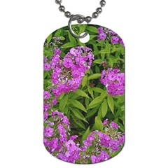 Stratford Garden Phlox Dog Tag (two Sides) by Riverwoman