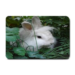 Adorable White Bunny Rabbit Small Doormat  by SimplyNature