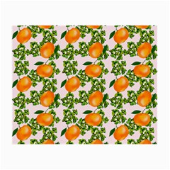 Citrus Tropical Orange Pink Small Glasses Cloth (2-side)