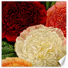 Vintage Carnation Flowers Canvas 16  X 16