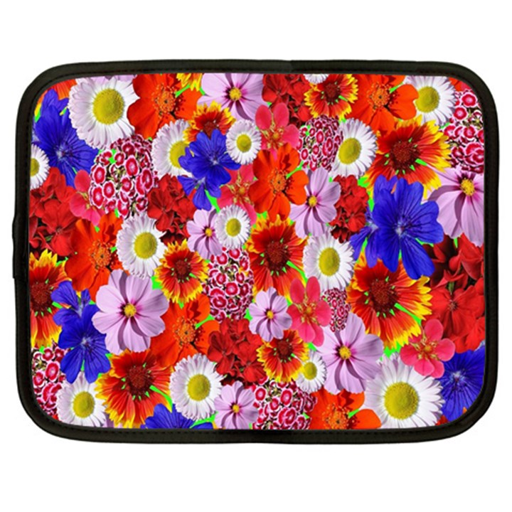 Multicolored Daisies Netbook Case (XXL)