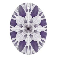 Fractal Floral Pattern Decorative Oval Ornament (two Sides)