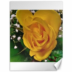 Yellow Rose Canvas 36  X 48  by Riverwoman