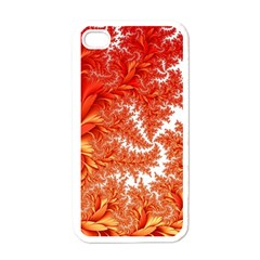 Flora Flowers Background Leaf Apple Iphone 4 Case (white)