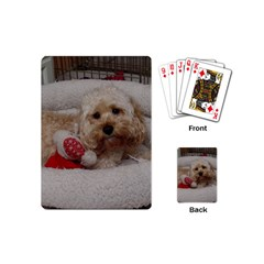 Cockapoo In Dog s Bed Playing Cards (mini)