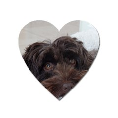 Laying In Dog Bed Heart Magnet by pauchesstore