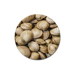 Shellfishs Photo Print Pattern Magnet 3  (round)