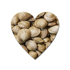 Shellfishs Photo Print Pattern Heart Magnet by dflcprintsclothing