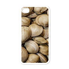 Shellfishs Photo Print Pattern Apple Iphone 4 Case (white)